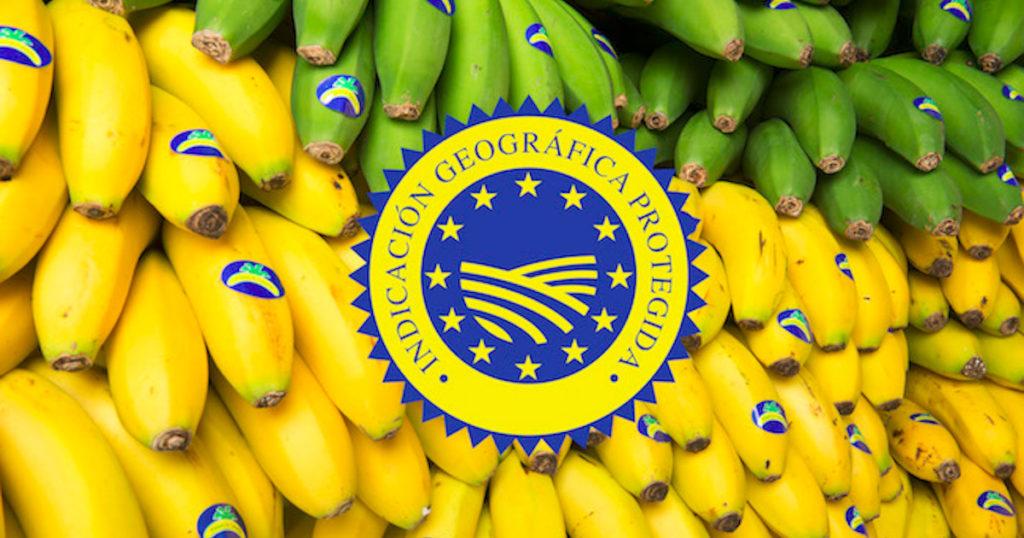 Plátano de Canario